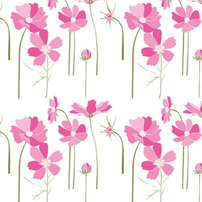 Cosmos Floral in Pinks