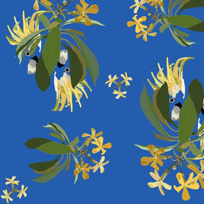 2941-Cockatoo-1-and-Frangipani-Blue-Bright