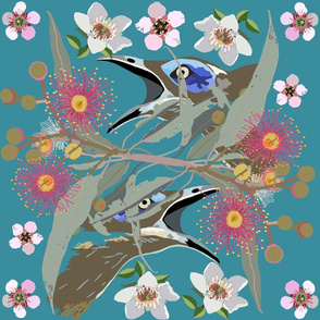 2941-HoneyEater-BlueFaced_1-Teal
