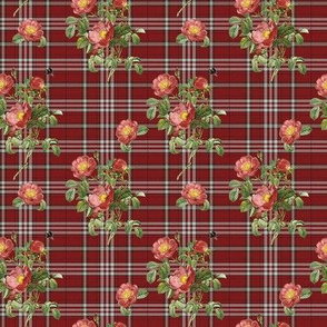 Wild Rose Tartan mini
