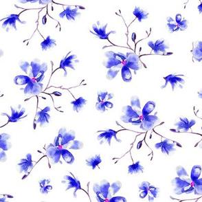 Blue magnolia • floral pattern