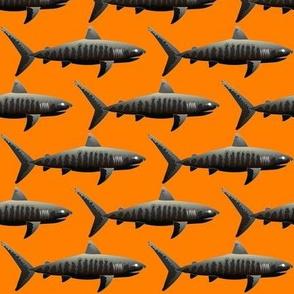 Negative Tiger Sharks on a orange background.