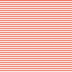 Stripes coordinate Colourful Forest red
