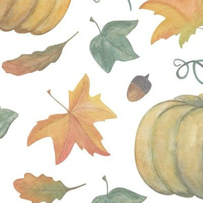 scattered autumn pumpkins on white