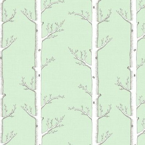 Birch Trees Soft Green