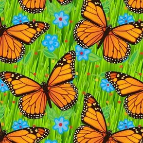 Monarch Butterflies Green Grass Blue Flowers