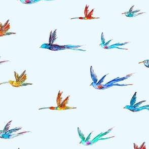 Endanged birds on blue