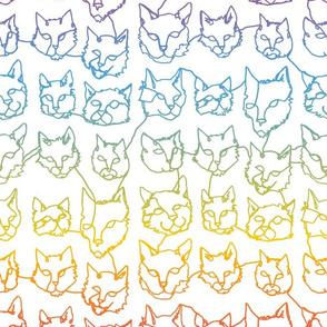 Contour Cats - Rainbow