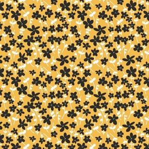 Daisies black, yellow and white