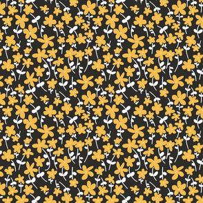 Daisies yellow, white and black
