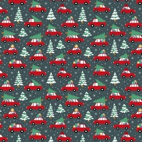 Driving home with christmas tree red dark ( mini)