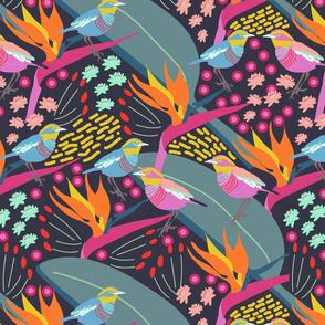 tropical birds-01