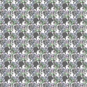 Small Floral Australian Shepherd bicolor portraits