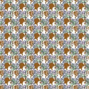 Small Floral Australian Shepherd bicolor portraits B