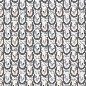 Small Bedlington Terrier horseshoe portraits