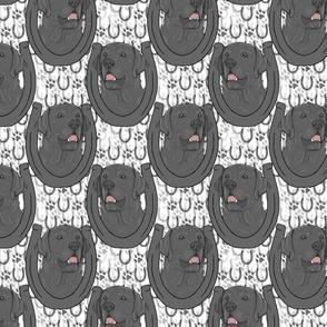 Black Labrador Retriever horseshoe portraits