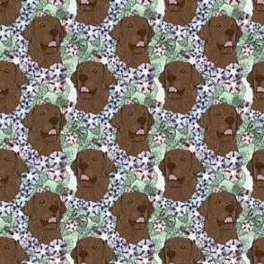 Floral chocolate Labrador Retriever portraits