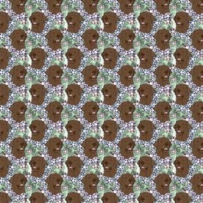 Floral chocolate Labrador Retriever portraits - small