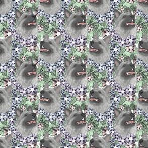 Floral Norwegian Elkhound portraits