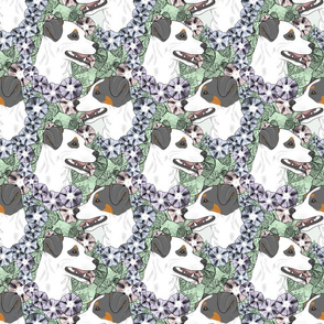 Floral Smooth coat Jack Russell terrier portraits B