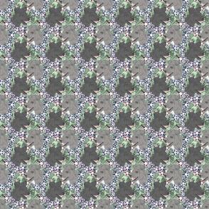 Floral Pumi portraits B - small