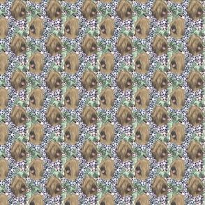 Floral Tibetan terrier portraits B - small