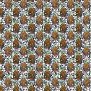 Floral Tibetan terrier portraits C - small