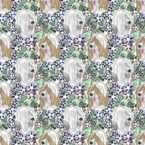 Floral Tibetan terrier portraits E