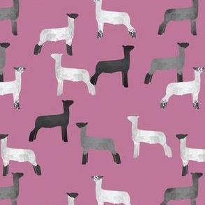 lamb tile pink