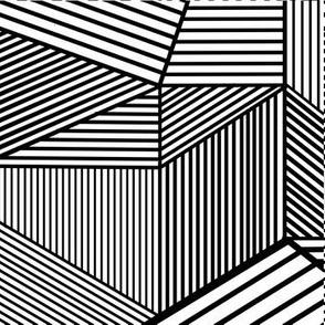 Crazy Illusions Black Lines