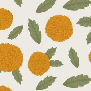 Orange Dahlias on a light background