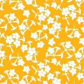 Puakenikeni Blossoms White on Mango 600