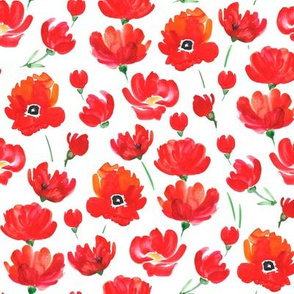 Watercolor red poppy field
