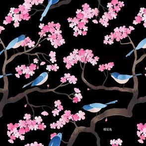 Cherry blossom birds black
