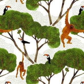 Orangutan and Toucan