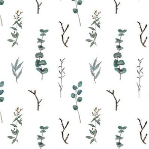 eucalyptus pattern (small)