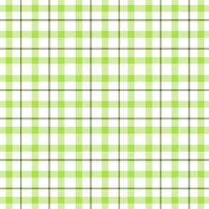2a greens plaid large(2)