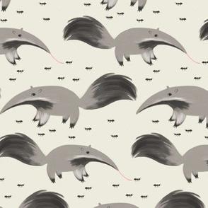 The Anteater Next Door