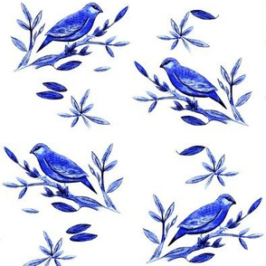 Madagascar Weaver Blue & white