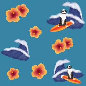 Surfing Daisy