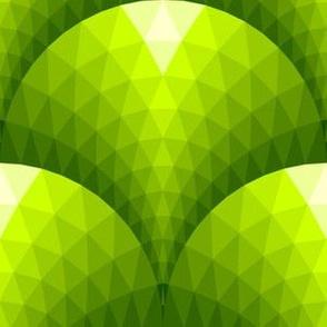 08120854 : scaletri : verdant