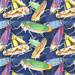 Watercolour Leafhoppers - Large