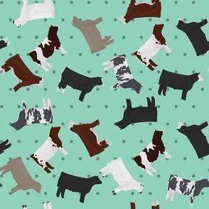 Steers Mixed Breed Aqua Polkadot
