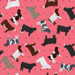 Steers Mixed Breed Pink Polkadot