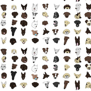 Dogs colour on white final
