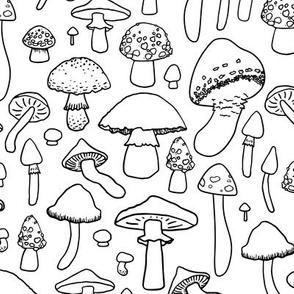 Mushrooms - Black and White