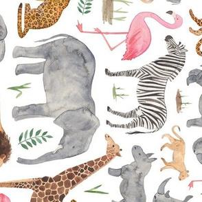 African Safari Animals (clockwise)
