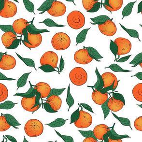 Tangerins on a white
