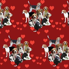 Valentine Beagle  fabric
