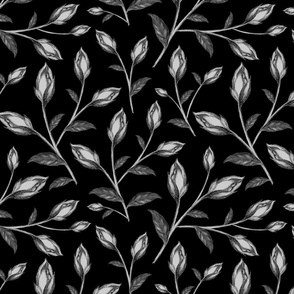 Black Background Floral Pencil Drawing